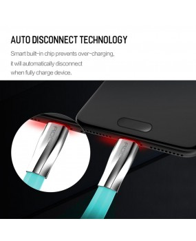 ROCK Salmon Auto Disconnect Fast Charging 1M 2A Metal LED USB Type C to A Cable